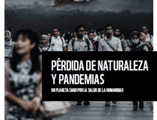 Pérdida de naturaleza y pandemias. Un planeta sano por la salud de la humanidad | WWF 2020